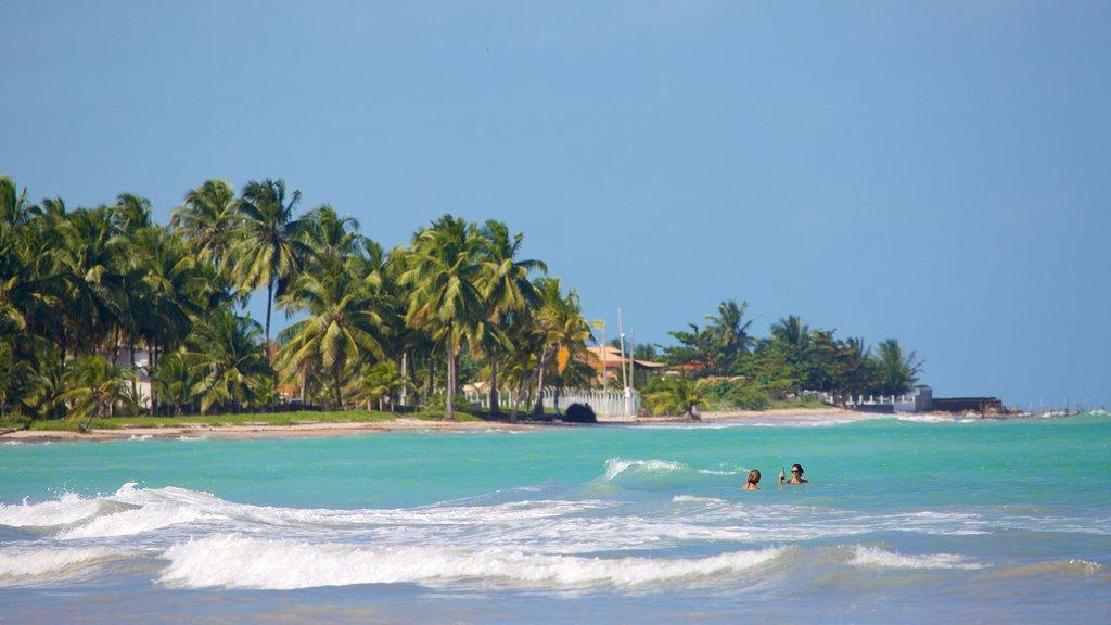Praia de Ipioca que inclui paisagens litorâneas, natação e ondas