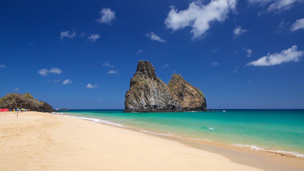 Praia Cacimba do Padre mostrando uma praia, imagens da ilha e paisagens litorâneas