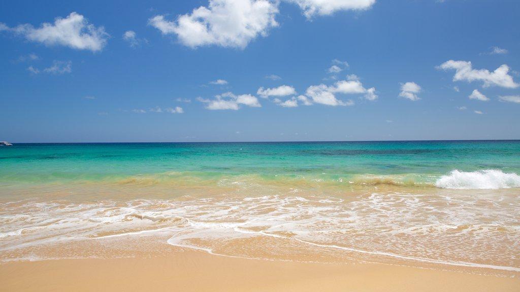 Praia Cacimba do Padre que inclui uma praia e paisagens litorâneas
