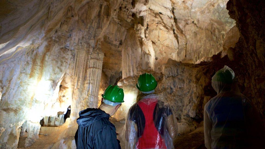 Grutas de São Miguel que inclui cavernas assim como um pequeno grupo de pessoas