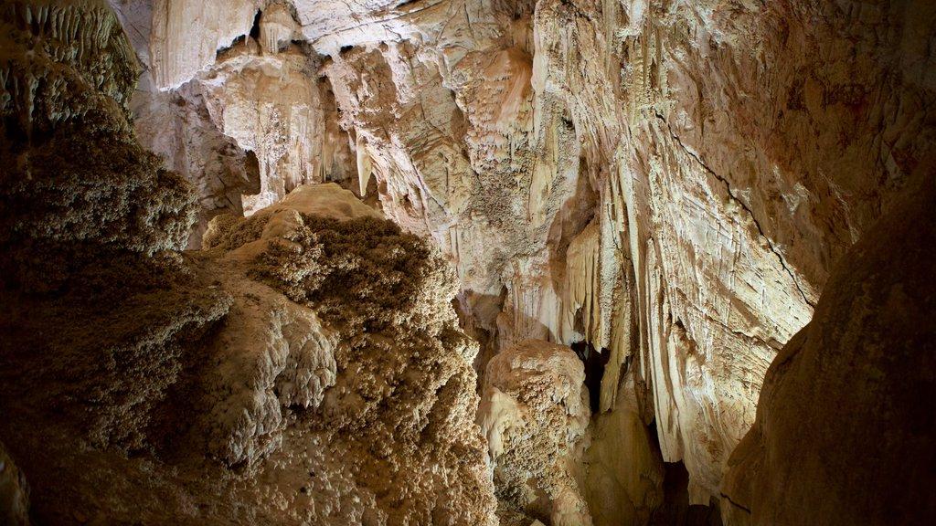 Grutas de São Miguel que inclui cavernas