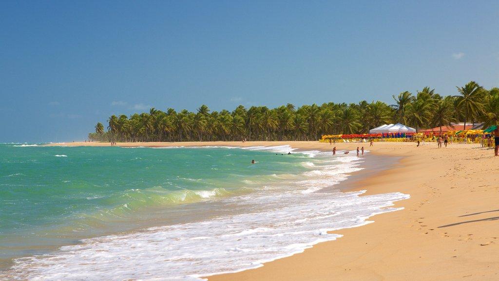 Maceio featuring general coastal views, a sandy beach and waves