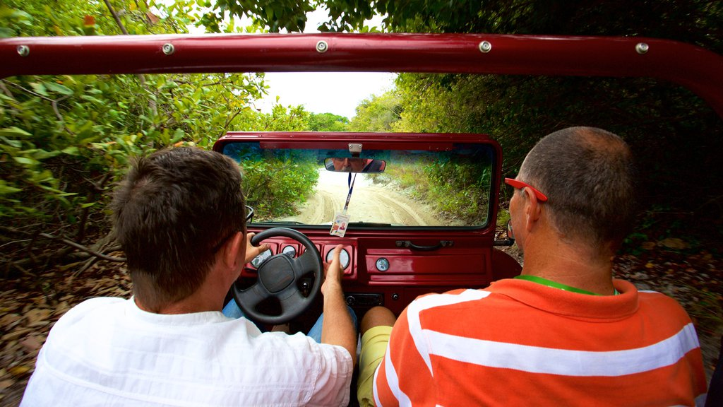 Natal which includes forest scenes and off road driving as well as a small group of people