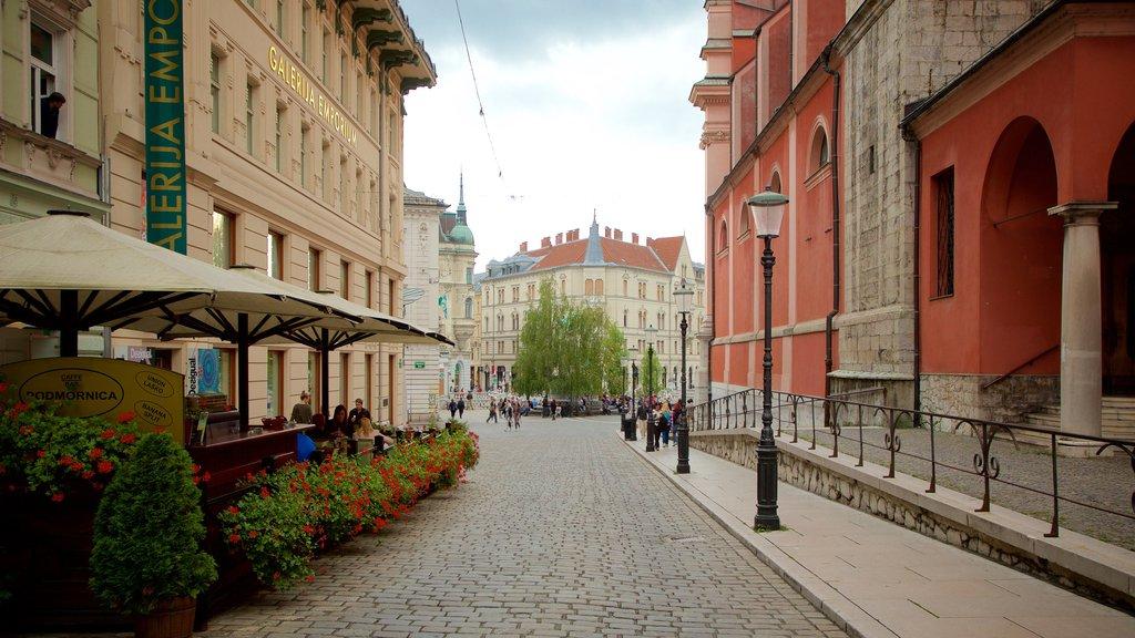 Ljubljana which includes a city