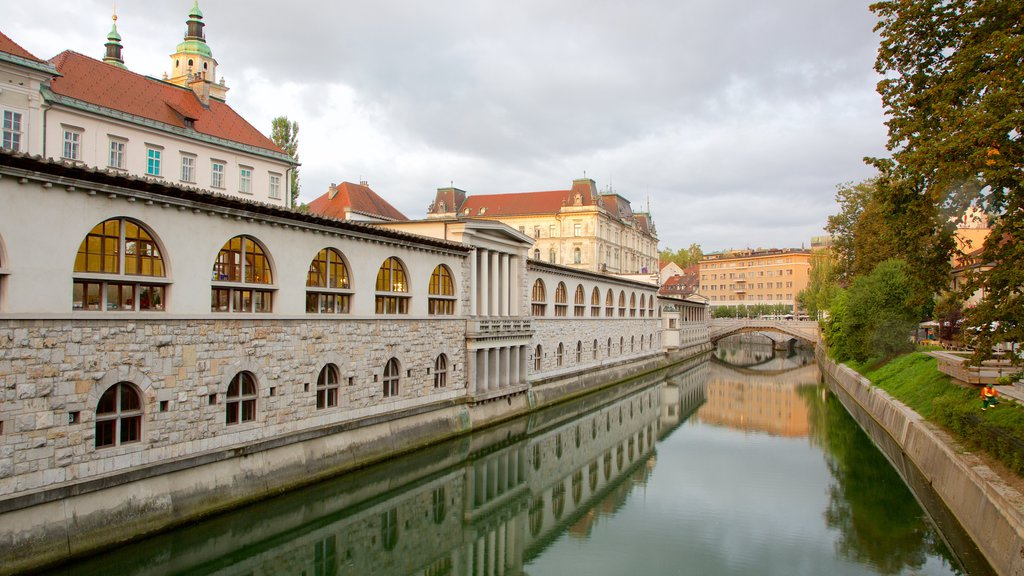 Ljubljana which includes a city, a river or creek and heritage architecture
