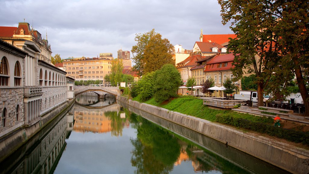 Ljubljana which includes heritage architecture, a city and a river or creek