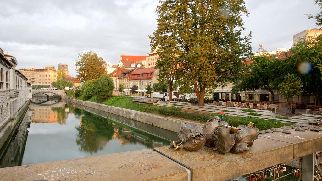Lubiana mostrando una ciudad y un río o arroyo