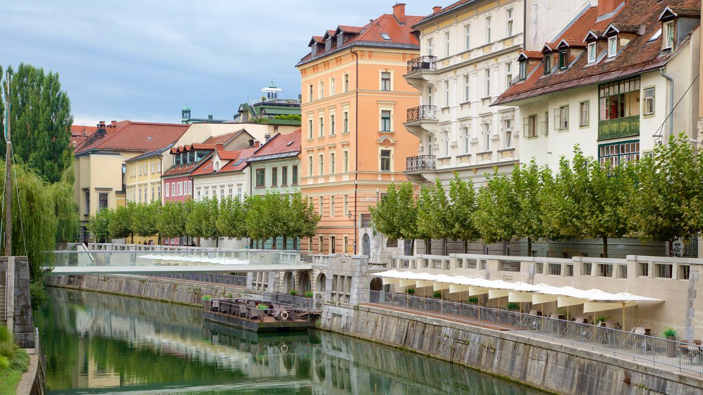 Ljubljana showing a river or creek and a city