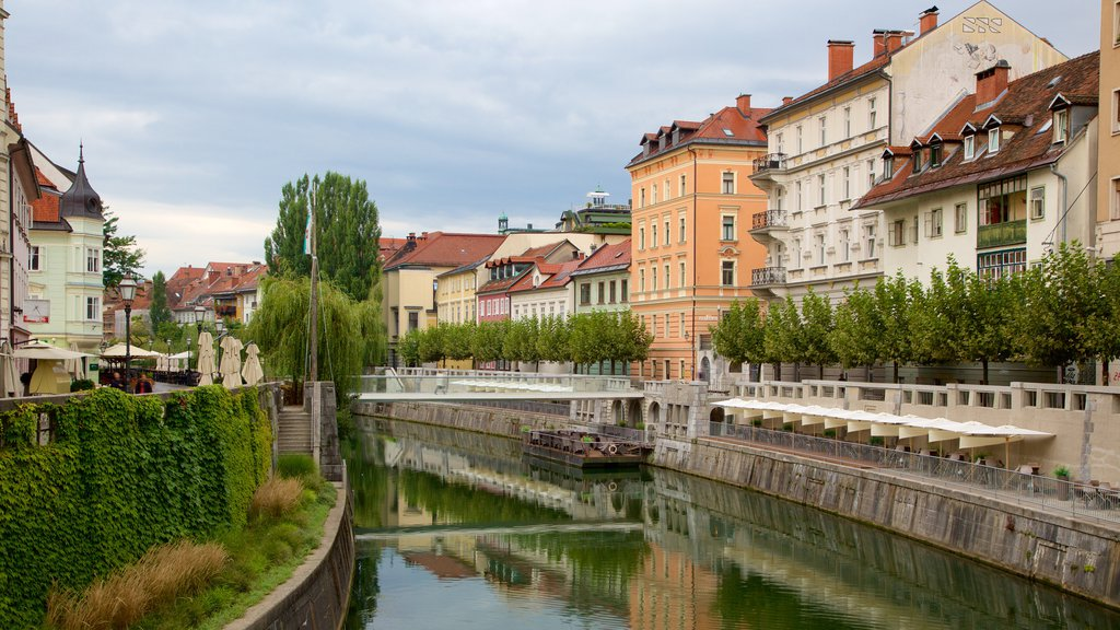 Ljubljana showing a river or creek, a bridge and a city