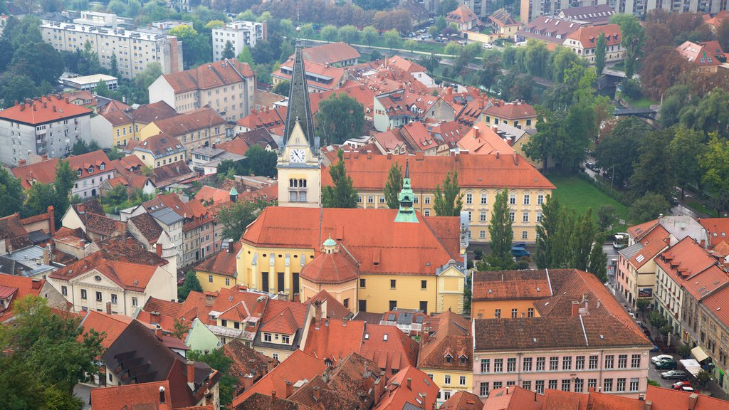 Ljubljana Castle which includes a house and a city