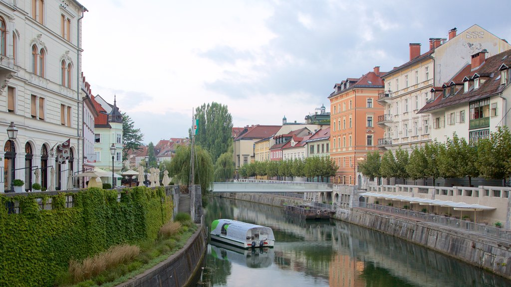 Ljubljana which includes a river or creek, a city and a bridge