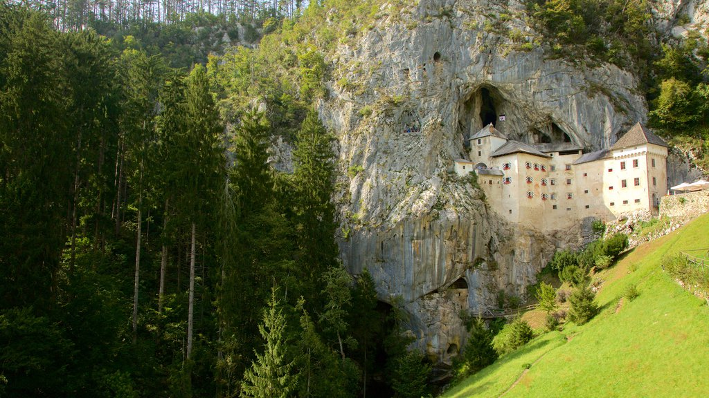 Predjama Castle featuring forests and heritage architecture