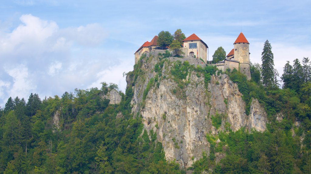 Bled Castle showing chateau or palace