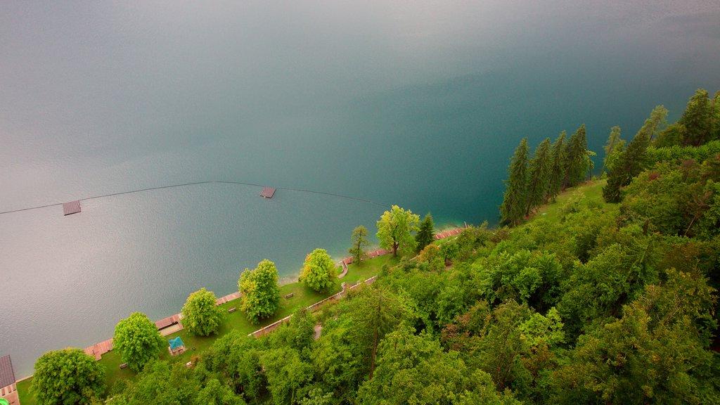 Lago de Bled mostrando un lago o abrevadero