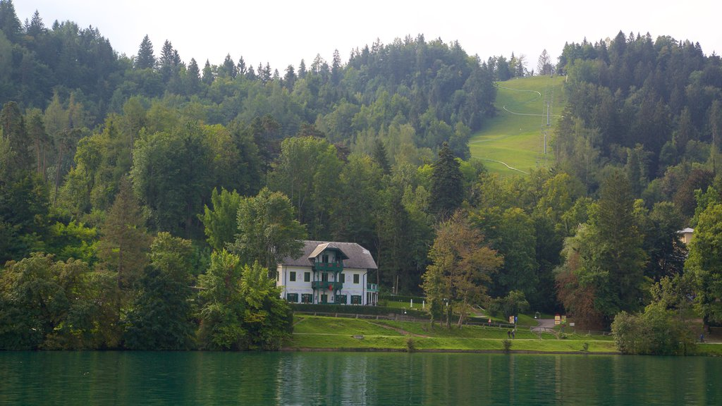 Bled showing a lake or waterhole, a house and forest scenes