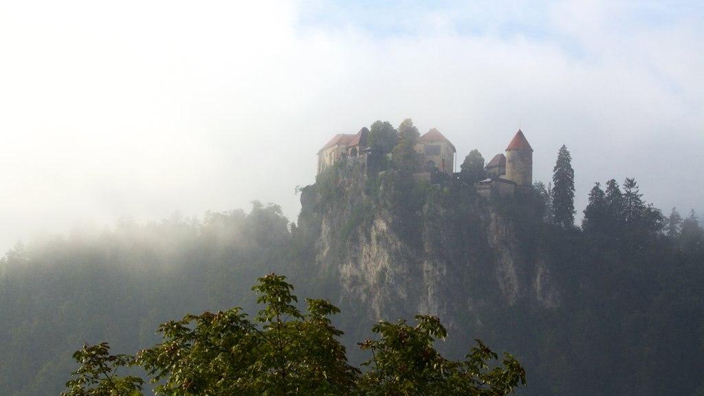 Castillo de Bled mostrando neblina o niebla y castillo o palacio