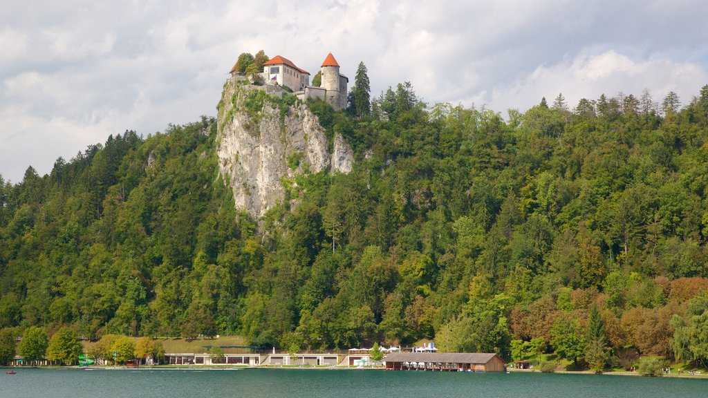 Bled Castle showing a castle, a lake or waterhole and forests