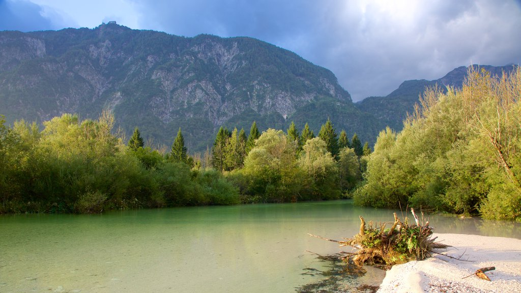 Lake Bohinj featuring mountains, landscape views and forests
