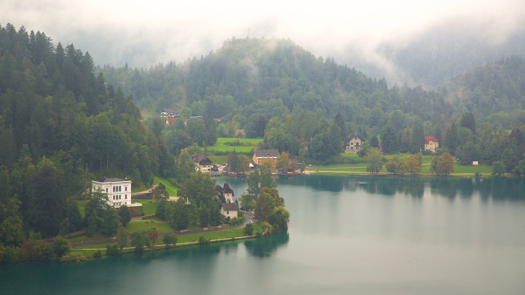 Lake Bled featuring forests, mountains and a lake or waterhole
