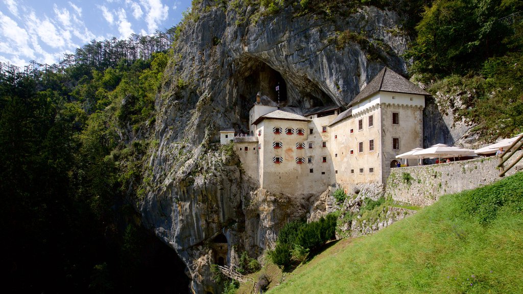 Predjama Castle showing a castle