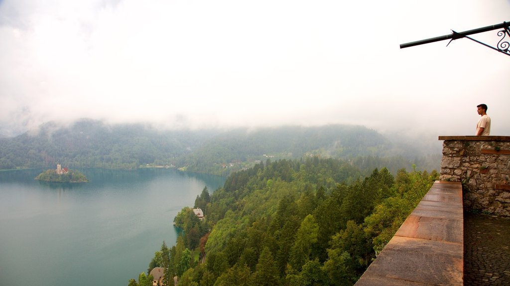 Bled Castle featuring chateau or palace, forests and a lake or waterhole