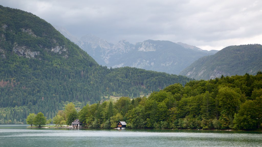 Lake Bohinj featuring forests, a lake or waterhole and mountains