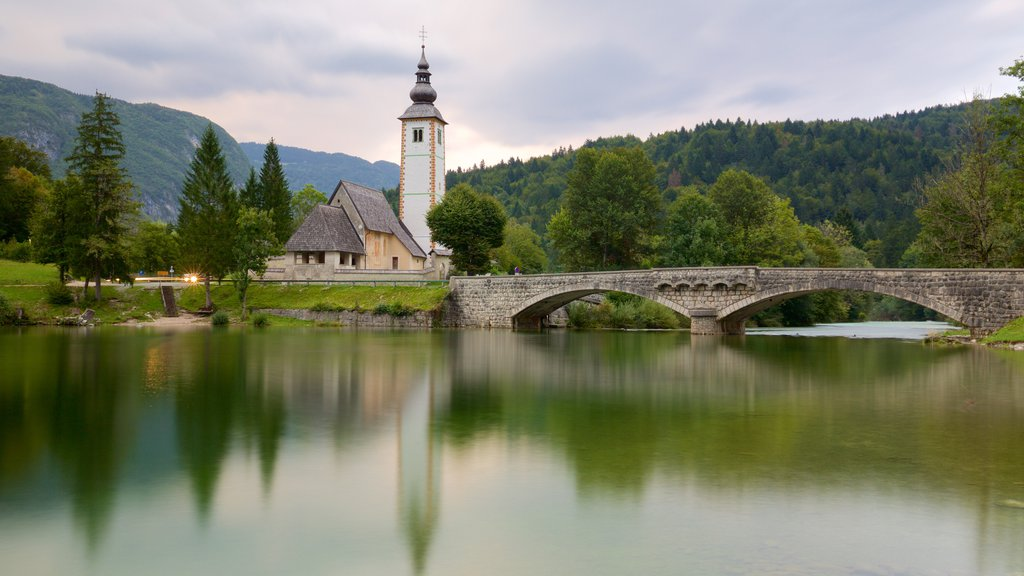 Lake Bohinj featuring a bridge, forest scenes and a lake or waterhole