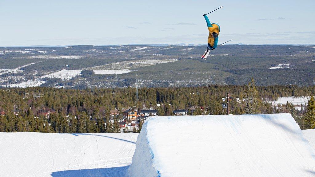 Salen que incluye nieve y esquiar en la nieve