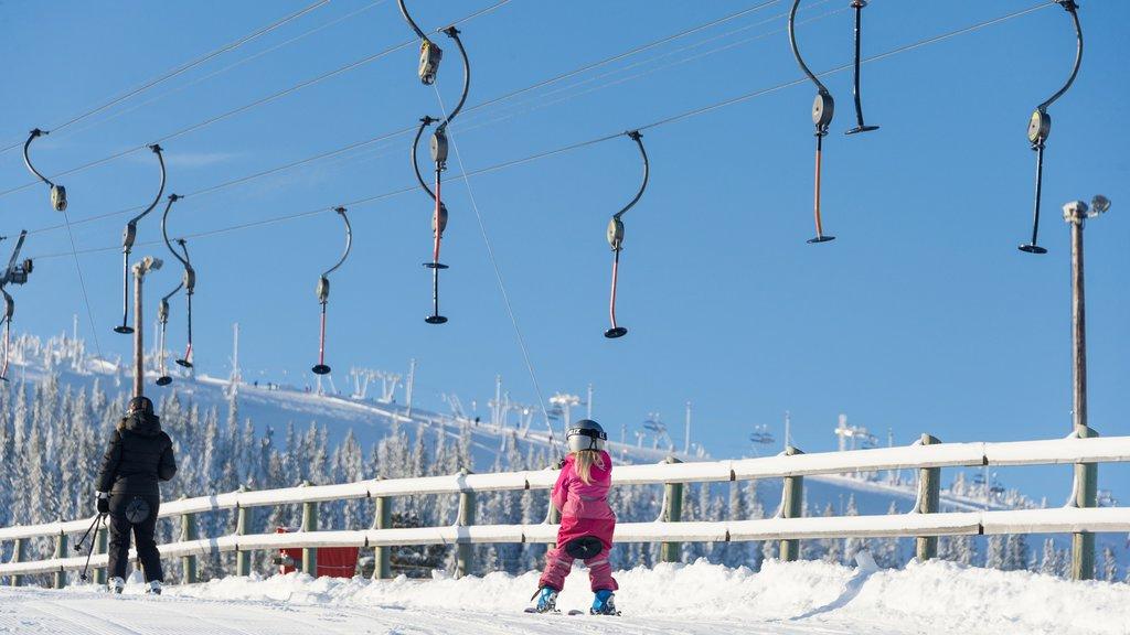 Salen mostrando nieve, una góndola y esquiar en la nieve