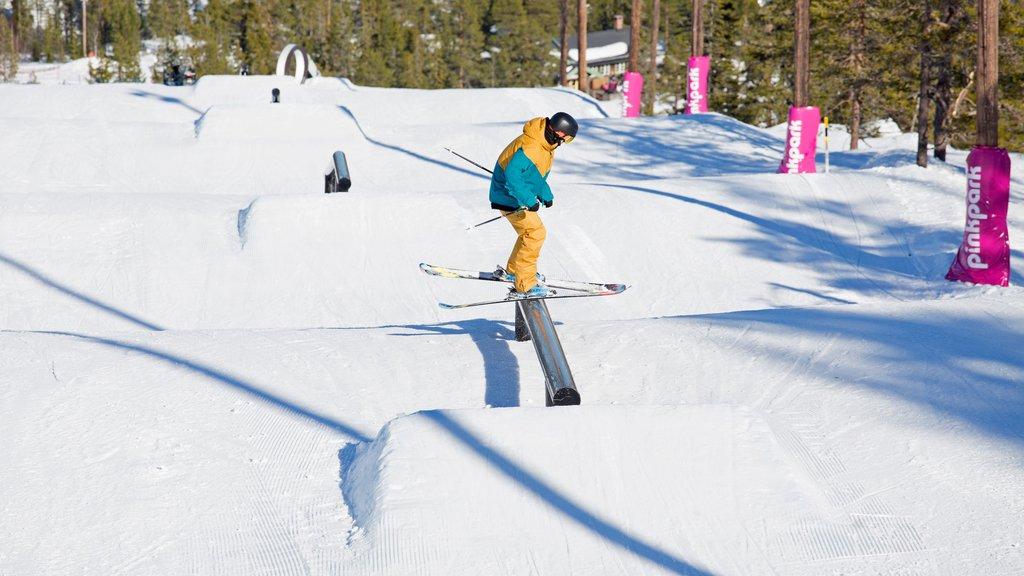 Salen mostrando esquiar en la nieve y nieve