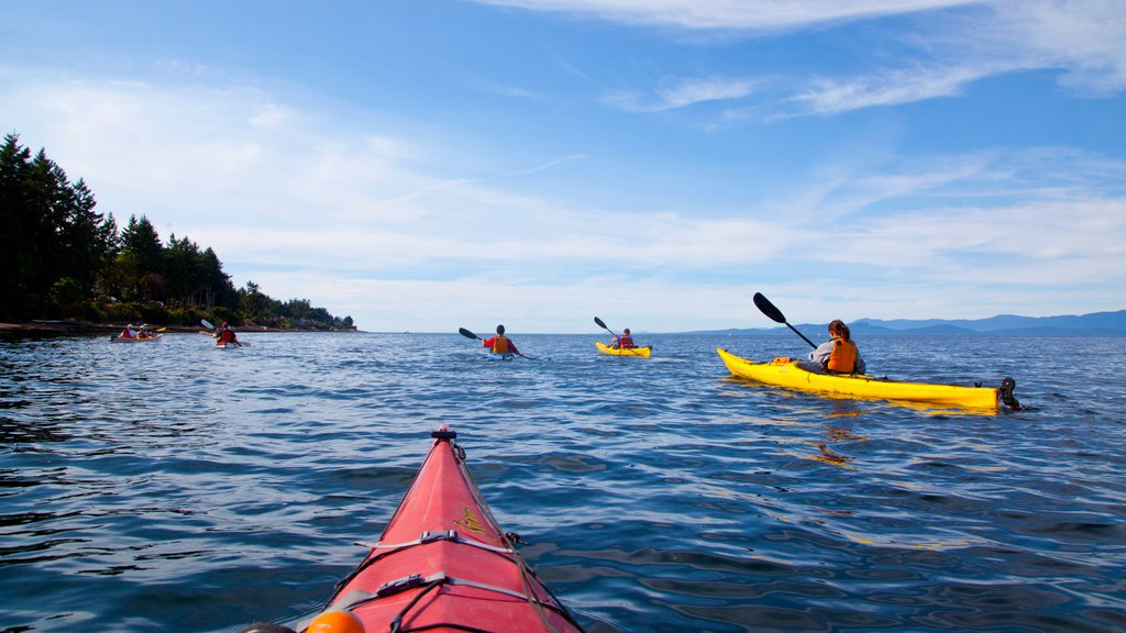 Parksville featuring kayaking or canoeing and general coastal views