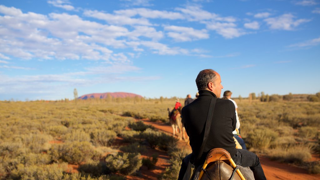 Uluru featuring horseriding and desert views as well as an individual male