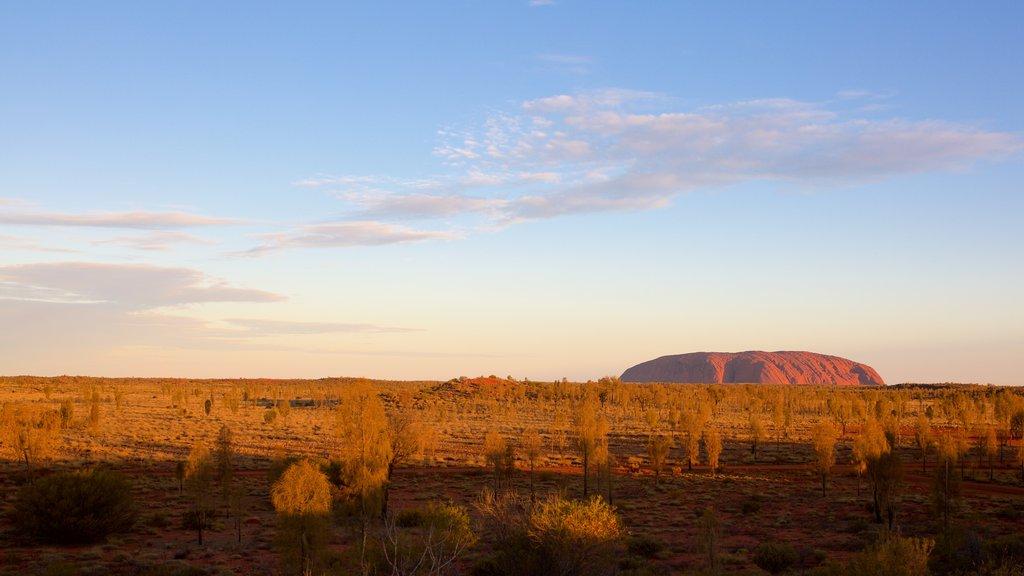 Uluru mostrando vistas al desierto y vistas de paisajes