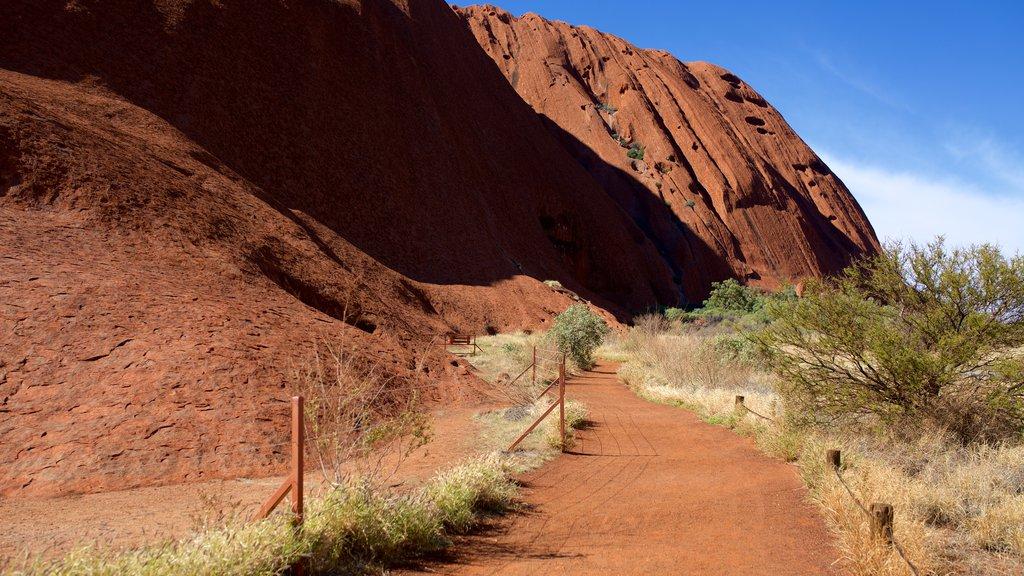 Uluru showing desert views
