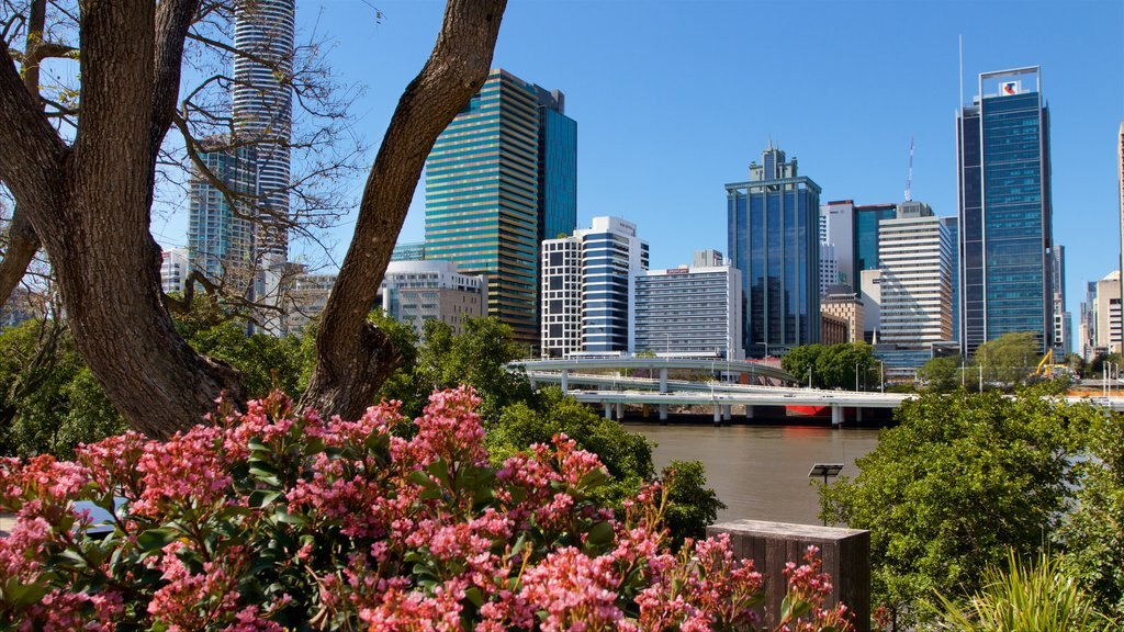 Southbank Parklands which includes flowers, a city and a river or creek
