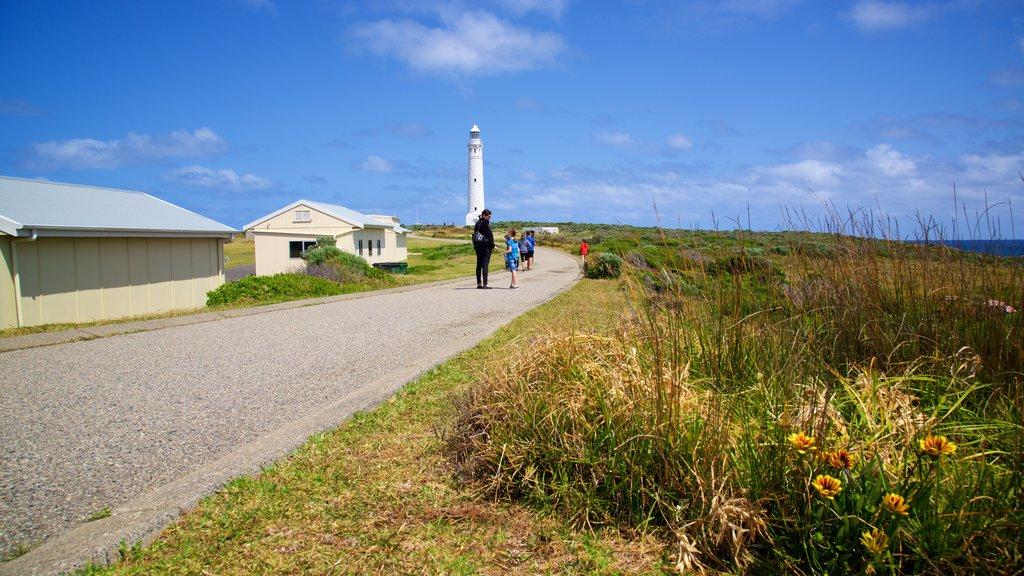 Faro de Cabo Leeuwin mostrando escenas urbanas, un faro y flores