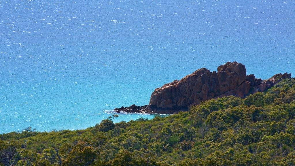 Naturaliste showing rocky coastline