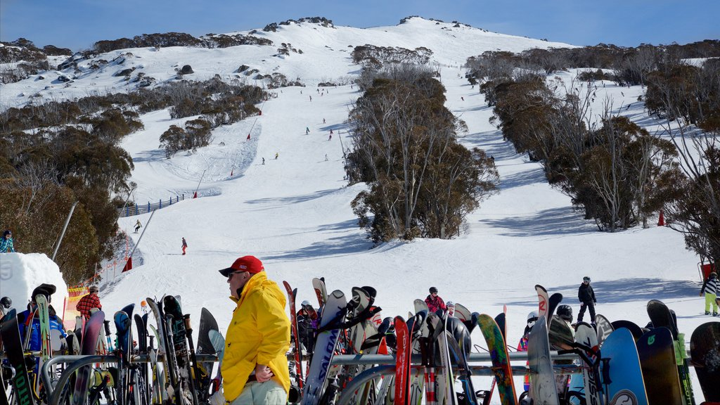 Thredbo which includes snow and snow skiing as well as an individual male