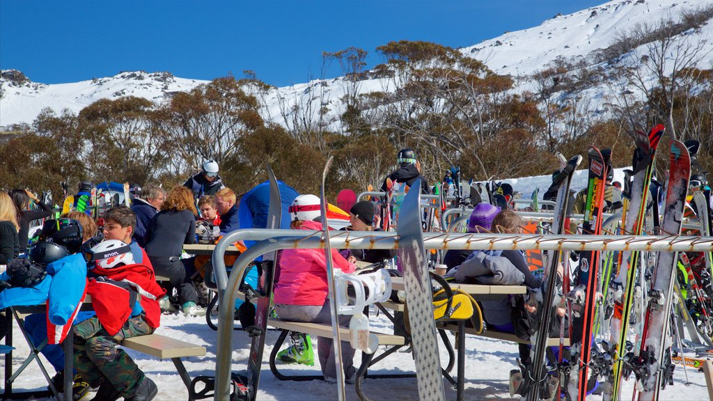 Thredbo which includes snow and snow skiing as well as a large group of people