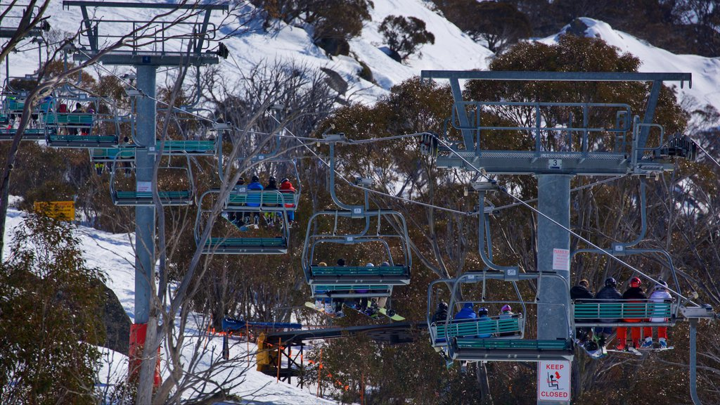 Thredbo which includes snow and a gondola