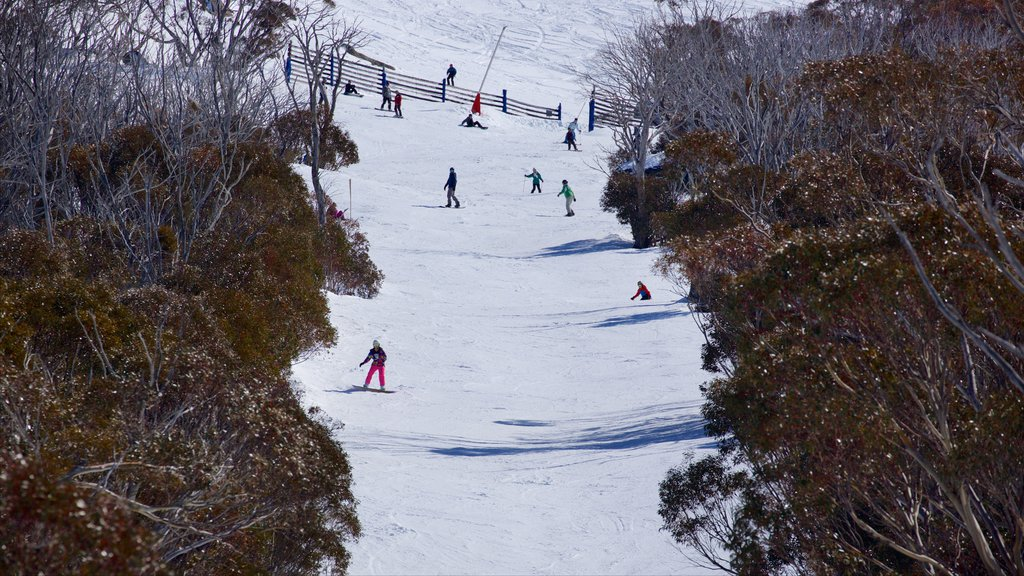 Thredbo which includes snow skiing and snow as well as a small group of people