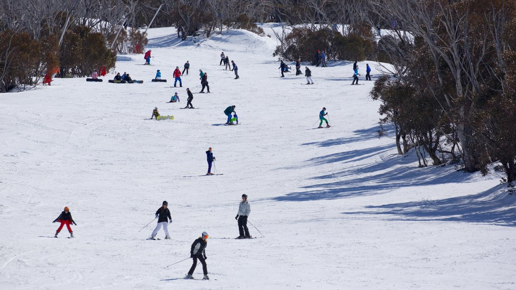 Thredbo showing snow skiing and snow as well as a large group of people