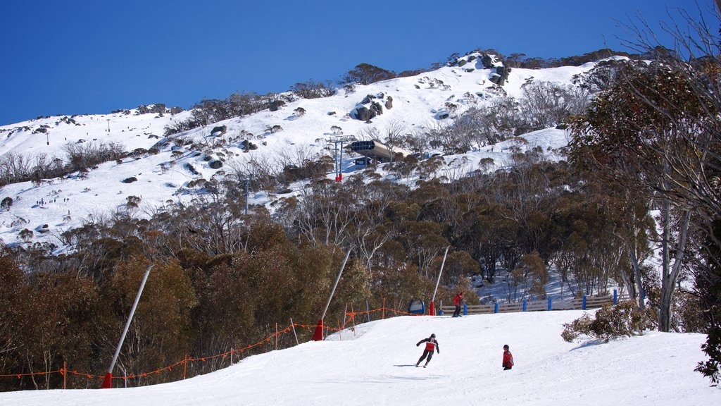 Thredbo showing snow skiing, mountains and snow
