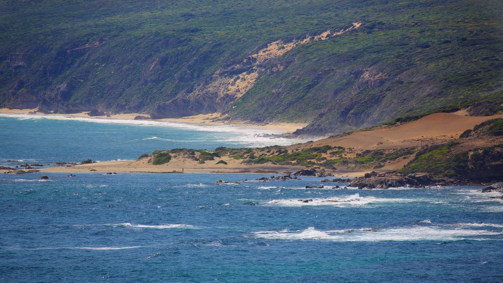 Leeuwin showing general coastal views and rocky coastline
