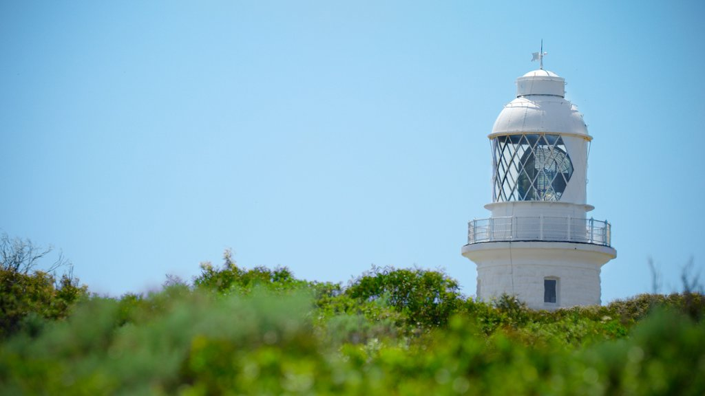 Cape Naturaliste Lighthouse showing a lighthouse