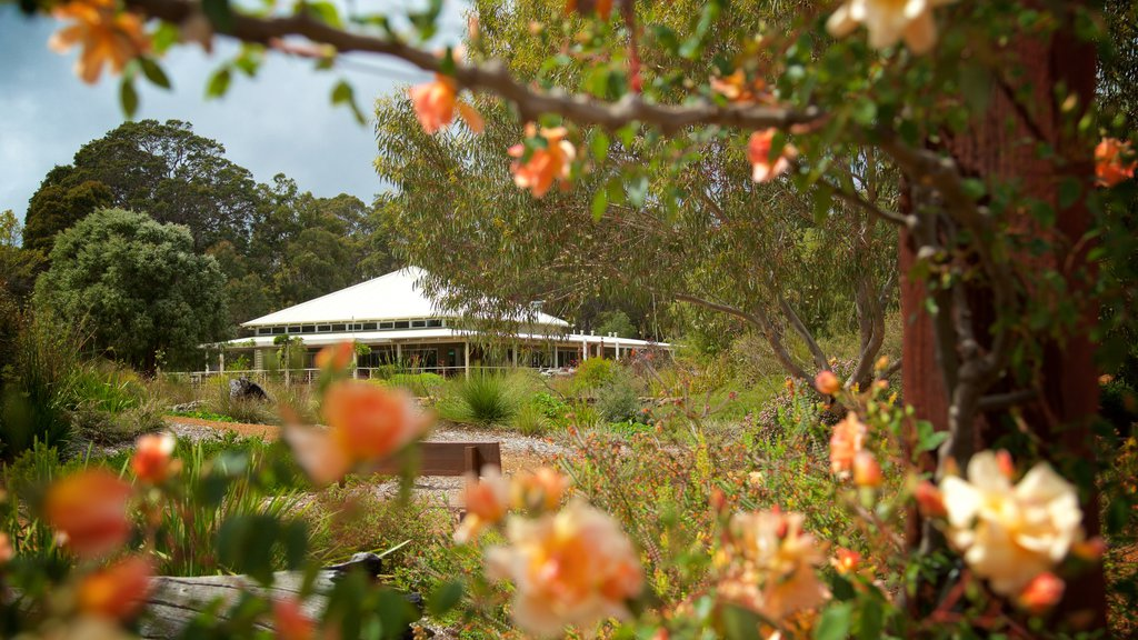 Amaze\'n Margaret River showing a house, a park and wildflowers