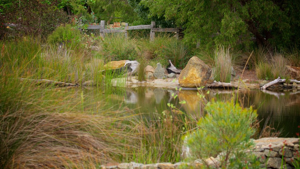 Amaze\'n Margaret River featuring a park and a river or creek