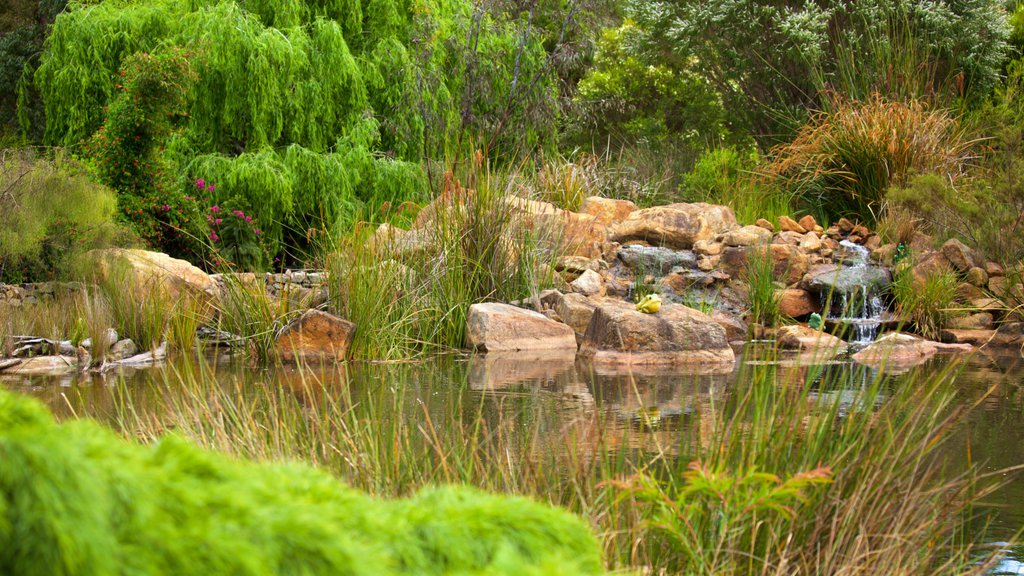 Amaze\'n Margaret River featuring a river or creek and a park