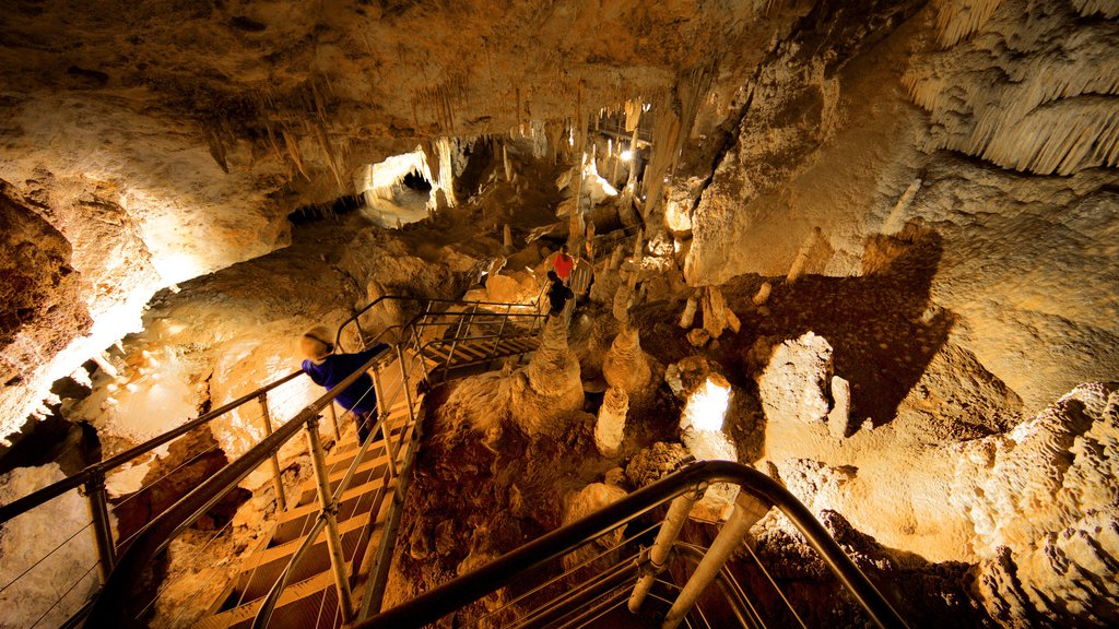 Mammoth Cave featuring caves as well as children