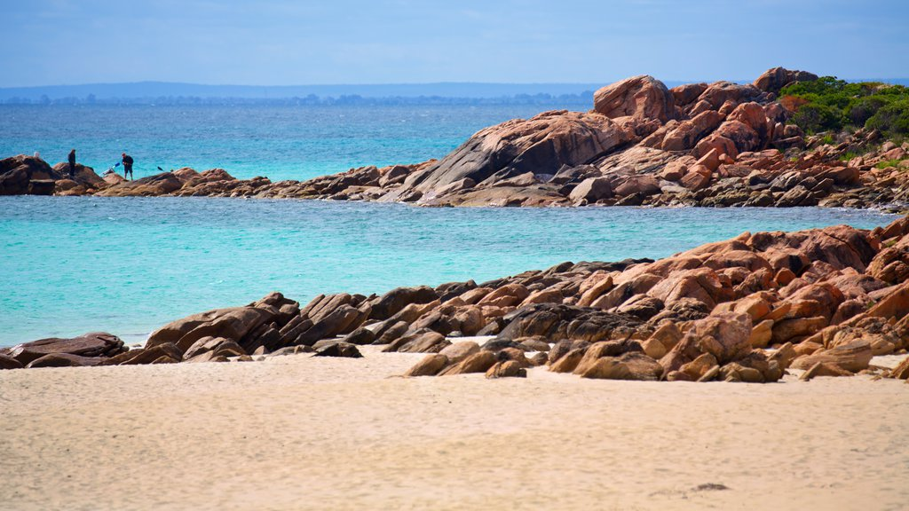 Naturaliste featuring rugged coastline and a beach